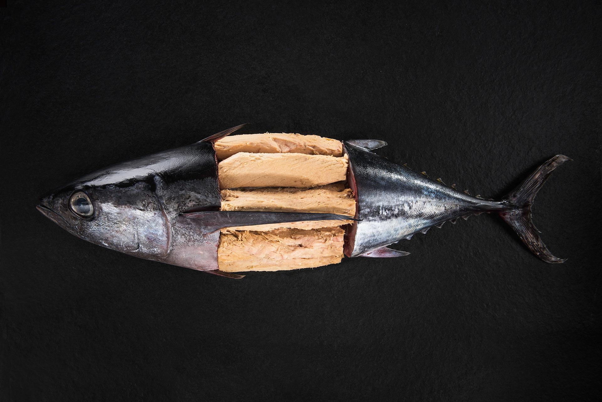 Lomos de atún y ventresca Angelachu